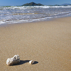 Mission Beach Dunk Island View