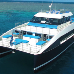 Cairns Reef Trip :Modern & Comfortable Boat | Dive & Snorkel Tour