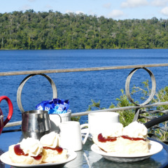 Morning tea time Lake Barrine in Cairns
