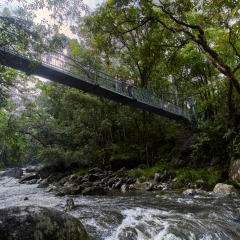 Mossman Gorge Tours - Daintree Aboriginal Cultural Tours