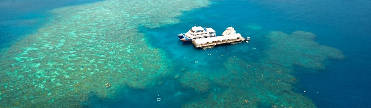 Great Barrier Reef tours, Pontoon Tours in Queensland Australia - Aerial view of coral reef