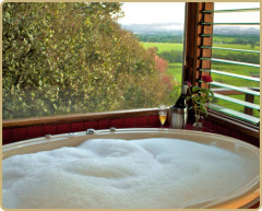 Mt Quincan Retreat - Double Spa Bath