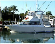 Private Charter Boat | Port Douglas North Queensland