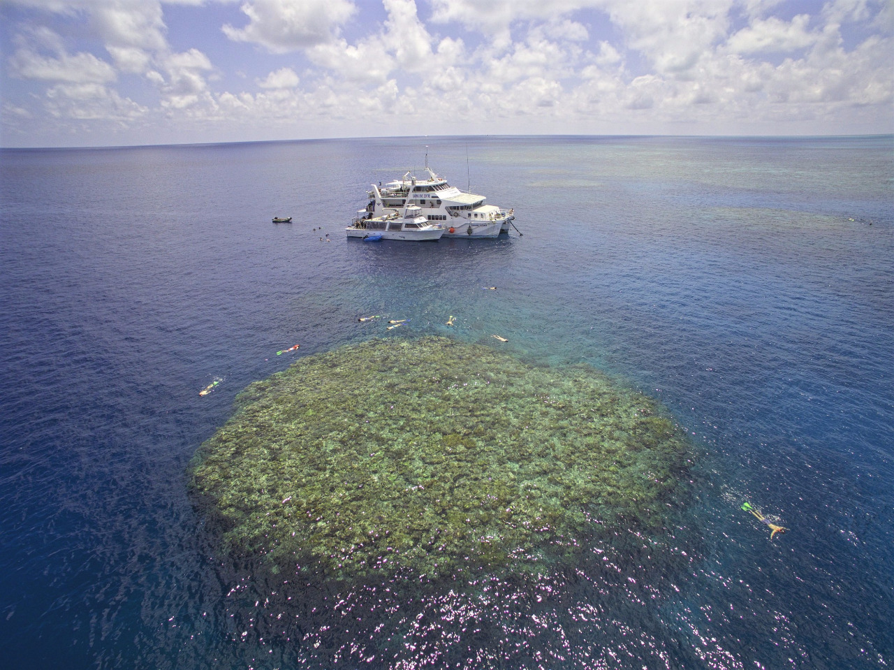 Cairns Scuba Dive Training Centre Learn To Dive On The