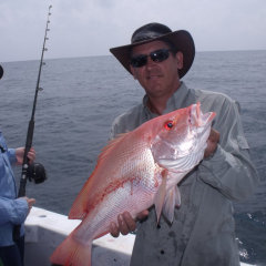 Nannygai Caught Off Port Douglas North Queensland On A Shared Fishing Charter