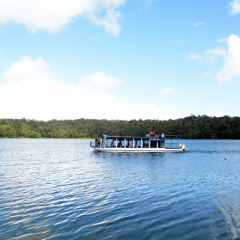 Nature Cruise on Lake Barrine Volcano Crater in Cairns