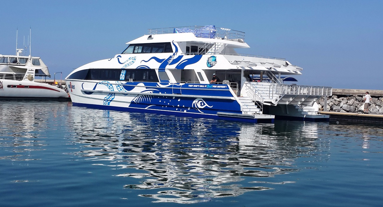 cairns attractions | new boat dive & snorkel tour | cairns