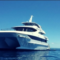Newest Boat In Cairns | Full or Half Day Great Barrier Reef Trips
