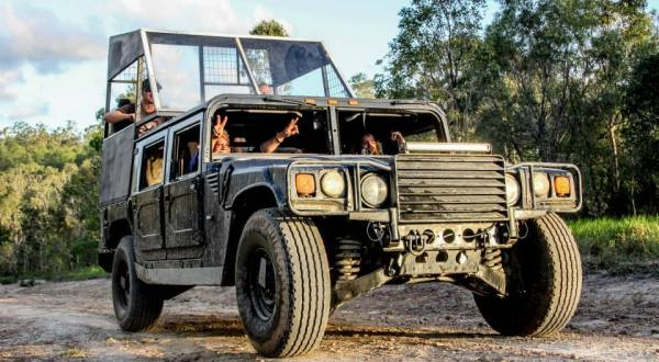 Night Hummer Tour | 4 Hour Tour From Cairns | Departs Monday To Friday