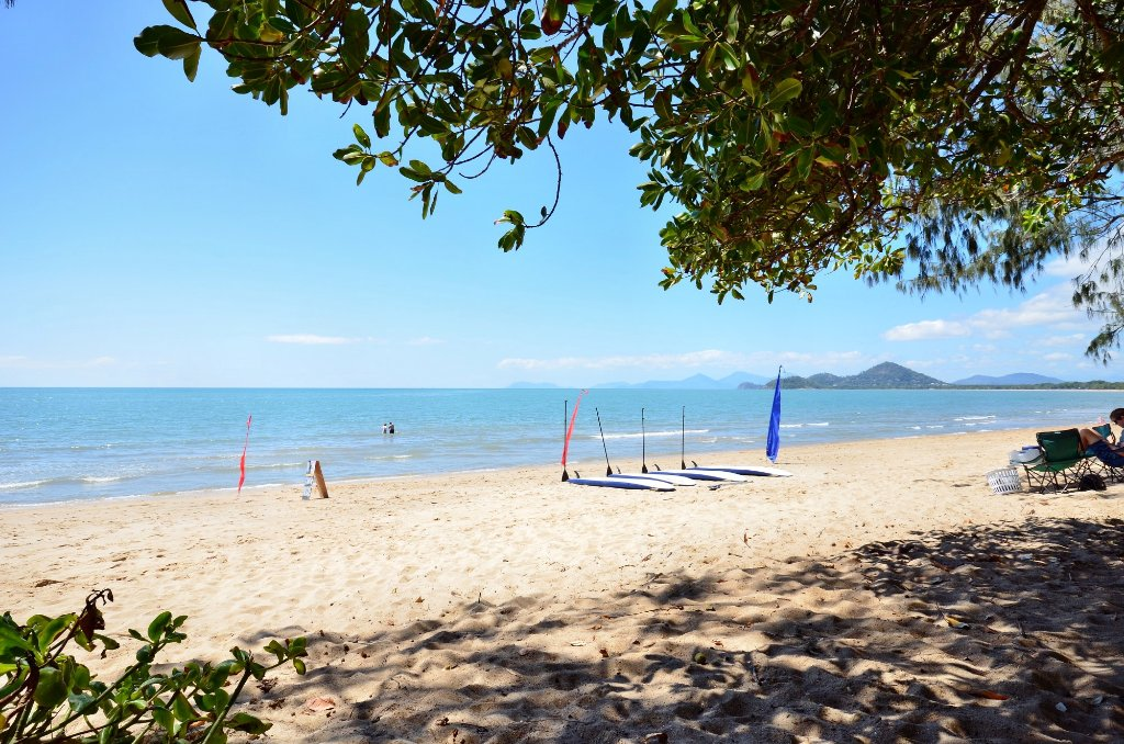 Daintree Tours From Palm Cove