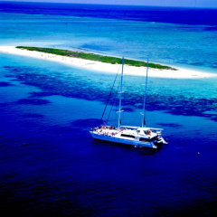 Full Day Trip To Michaelmas Cay On The Great Barrier Reef Off Cairns