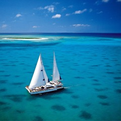 Great Barrier Reef Cruise to Michaelmas Cay 2 Day Combo Deal