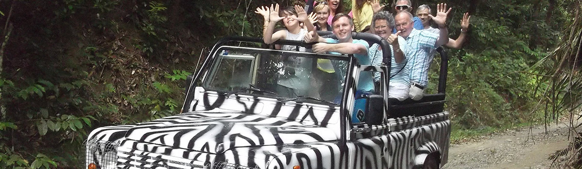 Half Day open top safari tour in the Daintree Rainforest