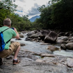 Our Cairns nature tours show you some beautiful places in Tropical North Queensland