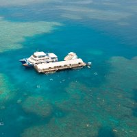 Aerial View of Great Barrier Reef Tour Pontoon | Cairns Reef Trip