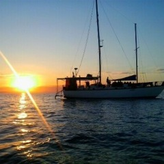 Overnight Sailing Trip To The Great Barrier Reef | Spend 1 Night On The Great Barrier Reef In Tropical North Queensland