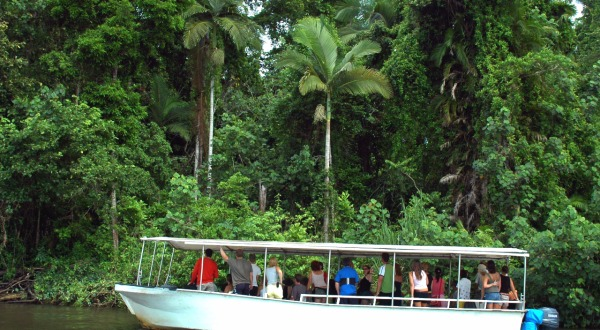 Overnight Stay In The Daintree | Daintree River Cruise Included | Day 2