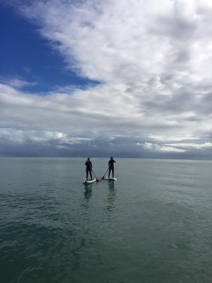 Paddle Boarding With Windswell | Visit The Daintree Rainforest And The Reef All At Once