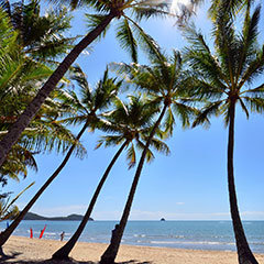 Palm Cove holiday accommodation - tours & attractions