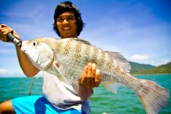 Palm Cove Fishing Tours - Great Barrier Reef