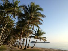 Palm Cove Holiday Accommodation - Beachfront Palm Cove