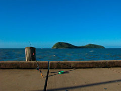Palm Cove Tours - Fishing on the reef