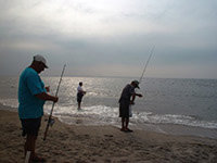 Palm Cove Tours - Fishing on the beach