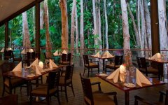 Paperbark Restaurant - Kewarra Beach Resort
