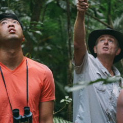 Personal nature tour guide teaches you all about the rainforest