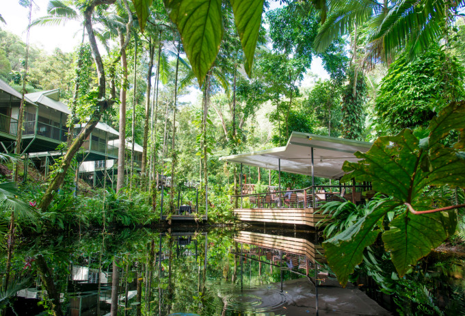 Photo Courtesy of Daintree Eco Lodge and Spa