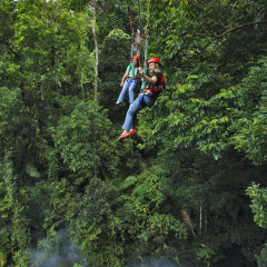 Play Tarzan & Jane in the wild jungle of the Daintree Jungle Surfing