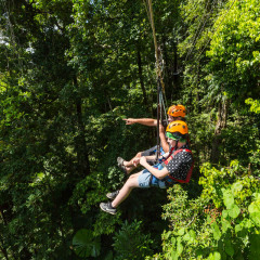Pointing Out the Amazing Views - Daintree Cape Tribulation Ziplining Tour