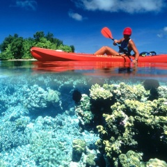 Port Douglas Charter Boat - Kayaking Great Barrier Reef