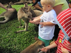 Port Douglas Family 5 Night Family Deal