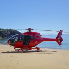 Port Douglas Helicopter Flights to Sand Cay - Alternative Beach Landing
