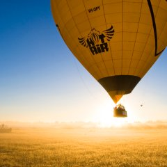 Port Douglas hot air balloon tours