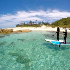 Port Douglas Private Charter Yacht | Stand Up Paddle Board in the clear waters off Lizard Island