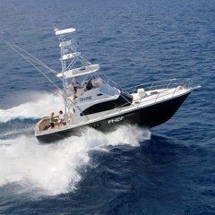 Port Douglas Private Day Fishing Charter