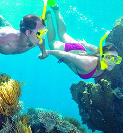 Snorkel Port Douglas | Reef Trips | Port Douglas Things To Do