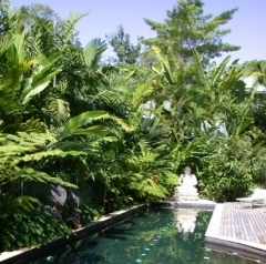 Port Douglas Secluded Accommodation | Your Own Private Pool