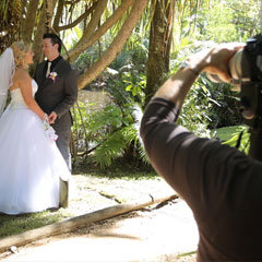 Port Douglas wedding photographer photographing a couple by a rainforest tree