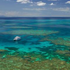 Best dive locations at Agincourt Ribbon Reefs from Port Douglas Queensland Australia