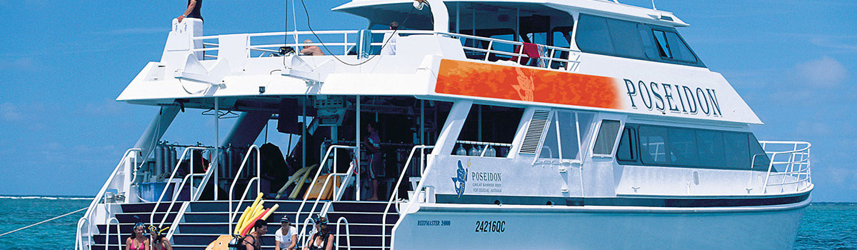 Swim with whales (seasonal) MV-POS Great Barrier Reef Cruises