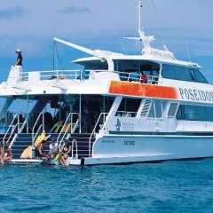 Learn to dive on this Great Barrier Reef day tour from Port Douglas