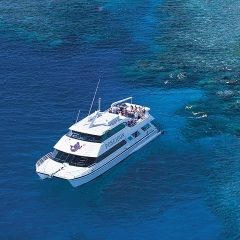 The most popular snorkel tour from Port Douglas in Queensland Australia