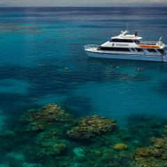 The best snorkel trip on a high speed catamaran to the outer Barrier Reef from Port Douglas in Queensland Australia