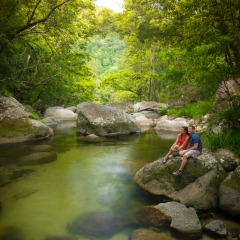 Pristine Water At Mossman Gorge | Part Of Full Day Tour To Daintree & Mossman Gorge | Tropical North Queensland