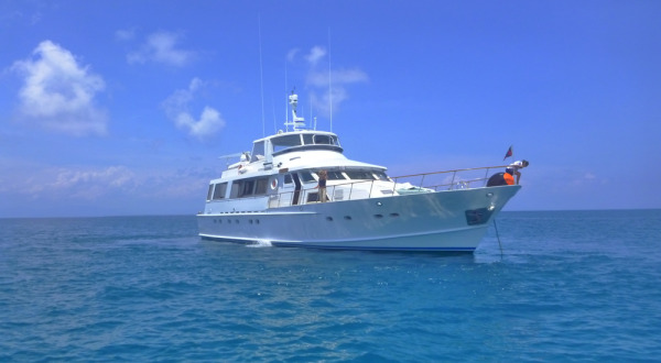 Private boat charters Port Douglas Great Barrier Reef Australia