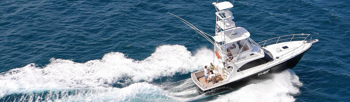 Port Douglas Private Charter Boat Fishing And/Or Snorkeling