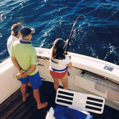 Shared Charter Light Tackle Reef Fishing Day Trip | Small Groups Only | Cairns Australia